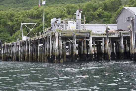 Kodiak National Wildlife Refuge, Alaska: Pier