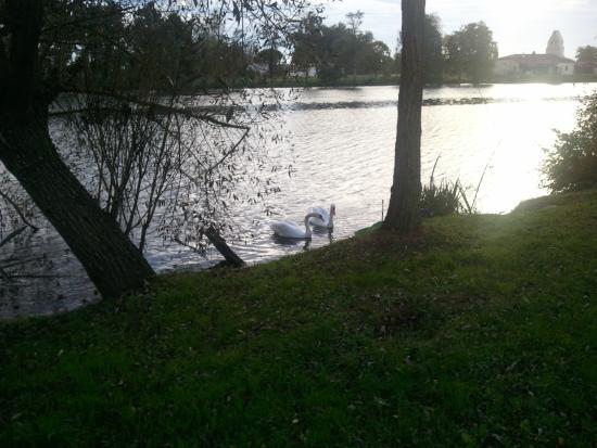 Castelmoron-sur-Lot, Frankrike: Le lac