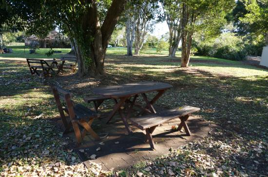 Maleny Hills Motel : Spacious grounds