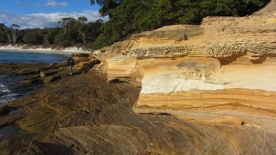 แทสมาเนีย, ออสเตรเลีย: Zona cercana al embarcadero