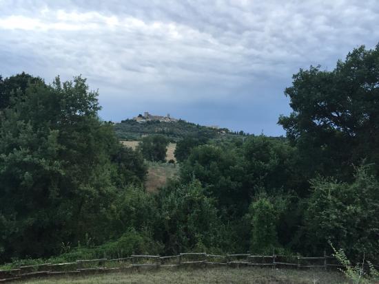 Agriturismo Podere Santa Croce : photo1.jpg