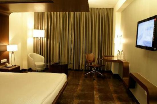 Cocoon Luxury Business Hotel: The room!