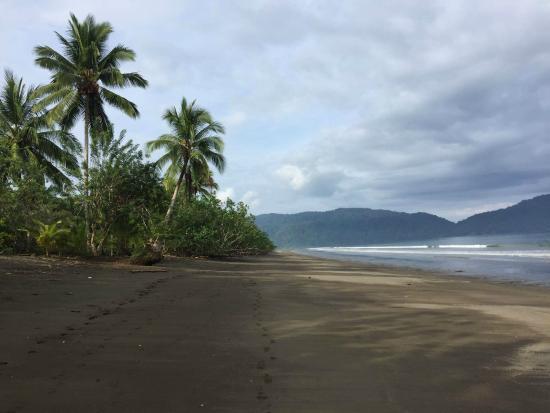 Jardin Botanico del Pacifico: La playa
