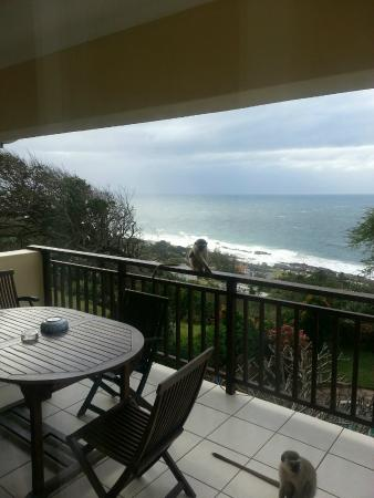 Bed & Breakfast by the Sea: The balcony and part of that great view