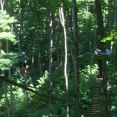 Barrie, Kanada: Wires / Stairs / Platforms in the Tree Tops