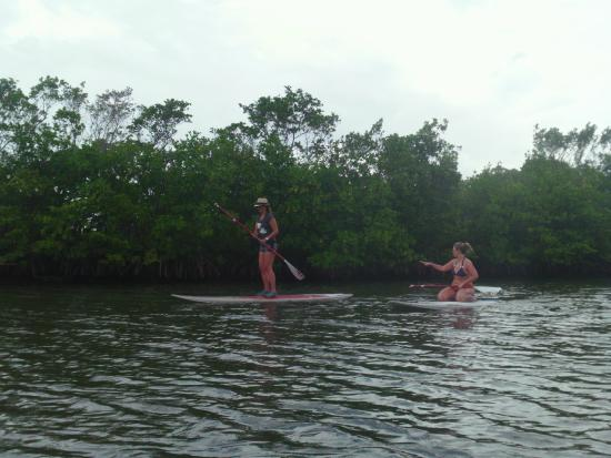 Blue Moon Outdoor Center: on the intercoastal skirting the park