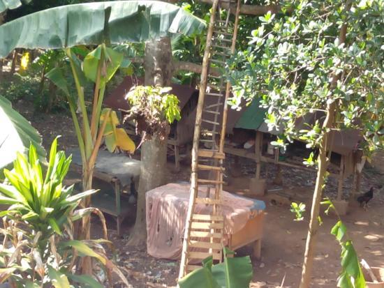 Bonnivoit Garden Homestay & Restaurant