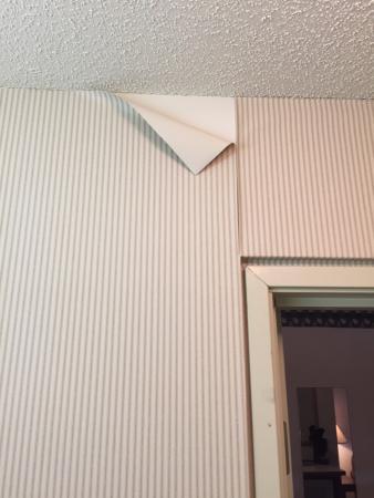 Quality Inn & Suites: photo1.jpg