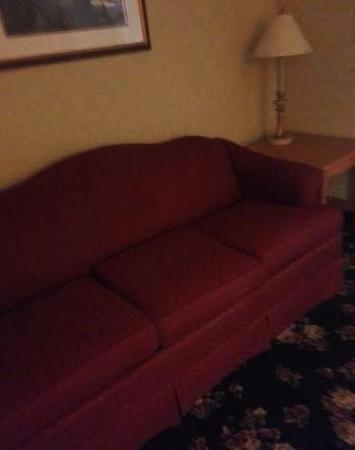 OurGuest Inn & Suites: sofa