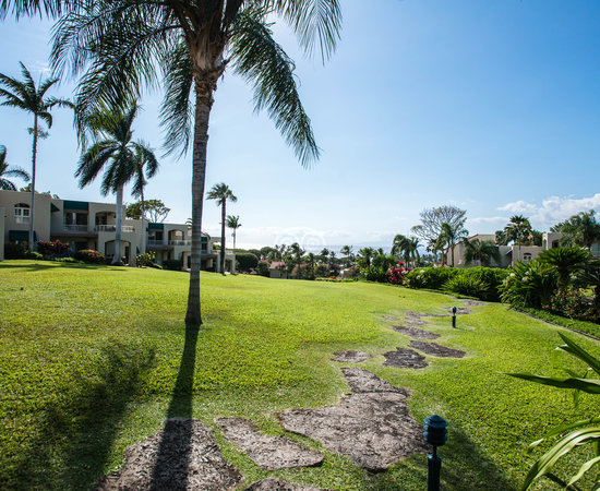 The Palms at Wailea Maui by Outrigger