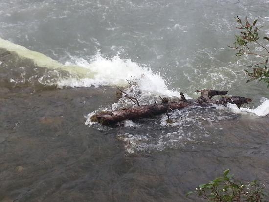 Lady Evelyn Falls Territorial Park : photo1.jpg