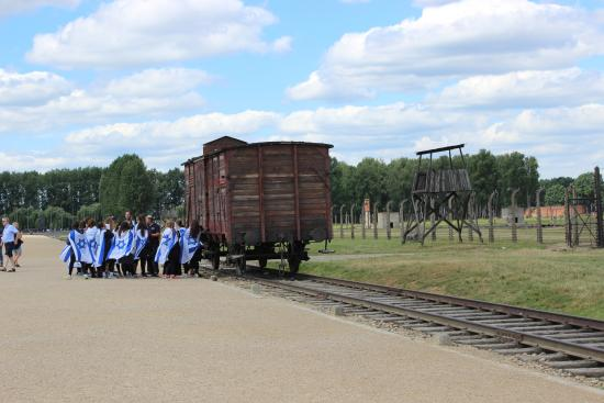 an examination of the town of auschwitz in southern poland We went to auschwitz a few days ago and we did go for the train in the end alf, the train wasn't packed at all and the carriages are heated if very basic we got the 7:13 train from platform 2 from the glowny station.
