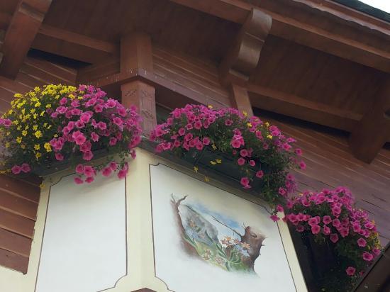 I fiori del Garni Costanza