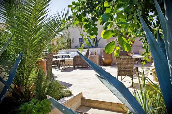 Riad Camilia: Rooftop garden