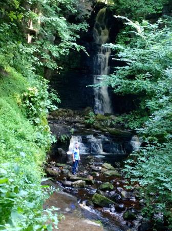 Holmedale Bed and Breakfast: Local waterfalls, great walk after breakfast