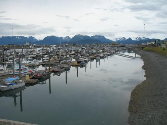 Crane's Rest B&B: Homer, Alaska the Halibut Fishing Capital of the World