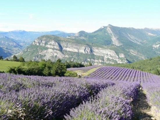 Aspres-sur-Buech, France : Le Buëch dans les Hautes Alpes, pays de la lavande fine