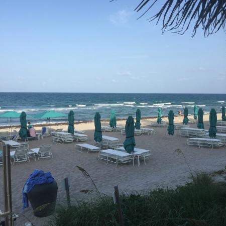 beach at tideline picture of tideline ocean resort spa palm beach tripadvisor. Black Bedroom Furniture Sets. Home Design Ideas