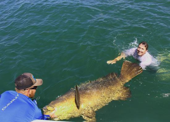 Boca Grande, Флорида: Ross Jumping in with his goliath grouper catch