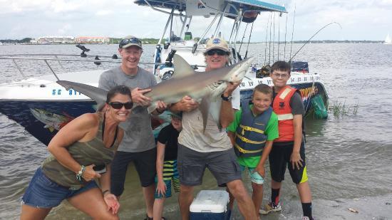 Sharkin Charleston/Dolphins of Charleston: One big fish - it swam away after this shot