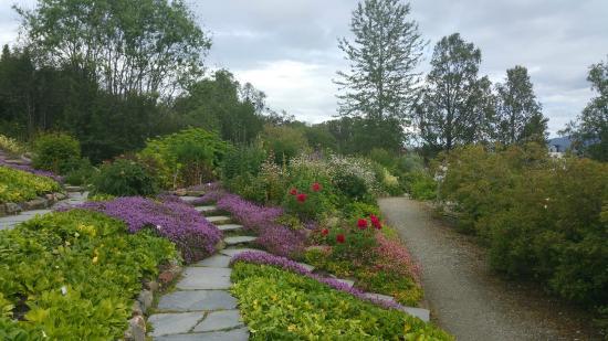 Garden - Bild von Tromso Botaniske Hage, Troms? - TripAdvisor
