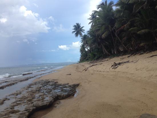 Casa Verde Hotel: praia do hotel