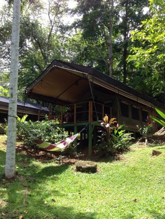 Rio Tico Safari Lodge: photo0.jpg