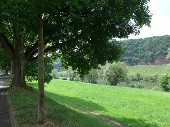Grevenmacher, Luksemburg: Moselle River walking path
