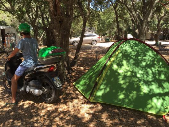 Camping La Pomposa