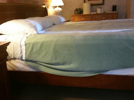 Howard Johnson Hotel Downtown Toronto - Yorkville: this was what we saw after we removed the duvet