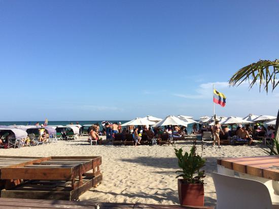Canoa: Rica comida, con precios razonables. La atención es muy buena y la vista a la playa mientras te