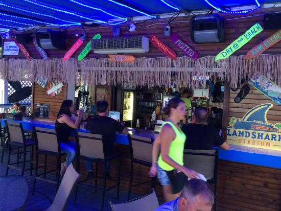 The Blue Parrot Grill: View of the bar
