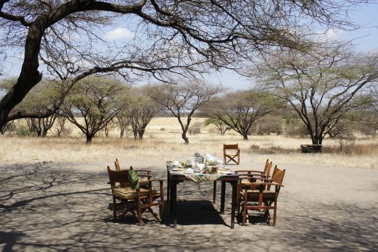 Manyara Ranch Conservancy: Breakfast setting