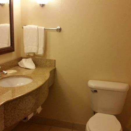Bathroom Picture Of Hilton Garden Inn Dubuque Downtown