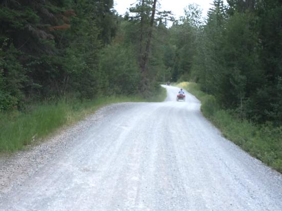 Jackson Hole Recreation: Wooded roads
