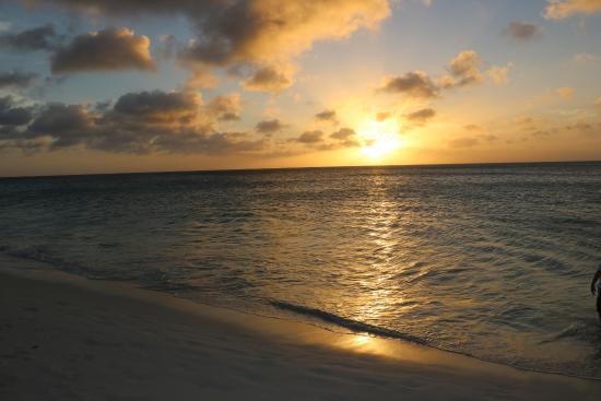 Oceania Deluxe Beachfront Resort by Prestige: Beach