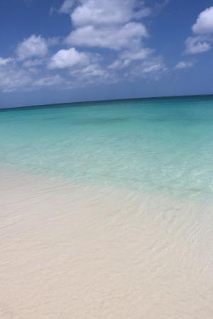 Oceania Deluxe Beachfront Resort: Beach