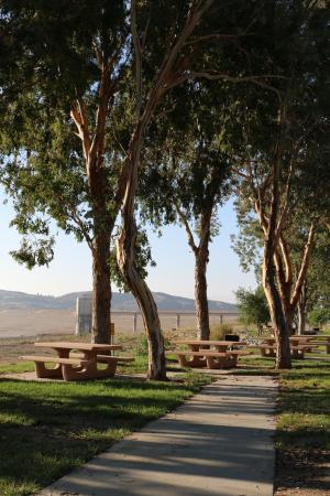 Castaic, CA: Picnic Area at the Lake