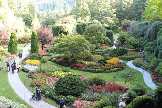 Sunken Garden Picture Of The Butchart Gardens Central