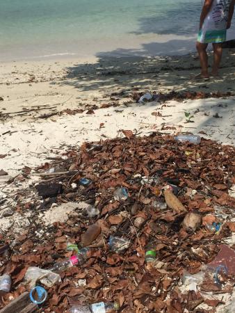 Pa Khlok, Thailand: Questa la spiaggia di un resort a 5 stelle?!?! Senza parole, solo tanto sconcerto!