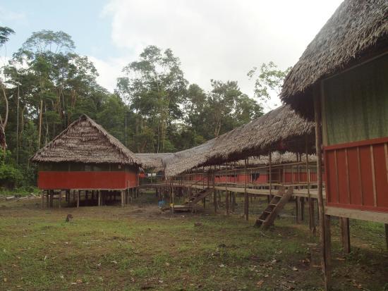 La Fuente del Amazonas Lodge : Bungalow Setting