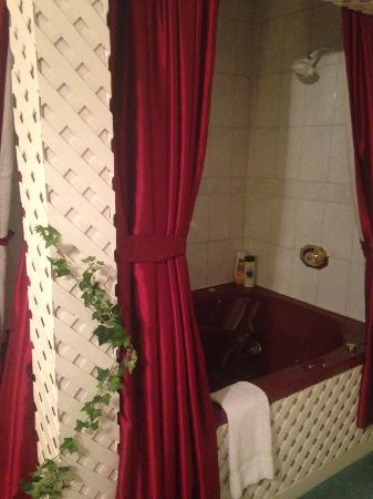 "Pleasant View Bed and Breakfast: Whirl Pool tub/shower in ""Secret Garden"" room"