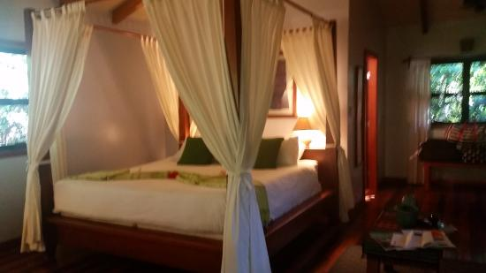Hamanasi Adventure and Dive Resort : Room