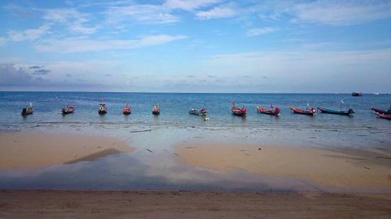 Beach - Pensbungalow Photo