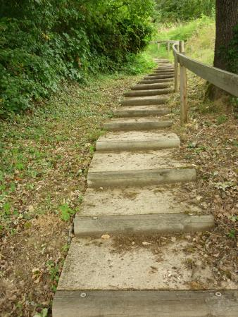Ultreia Moissac: Steps down from the field
