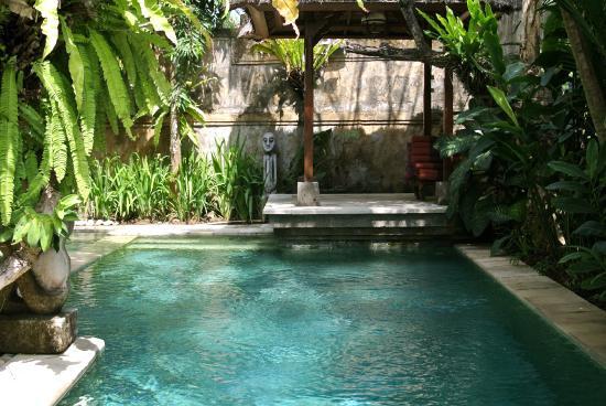 Sunclad Villa: Pool
