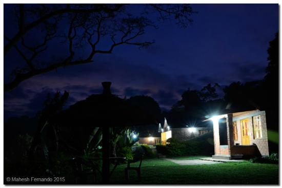 Swiss Farm Cottage : View of the cottages at night