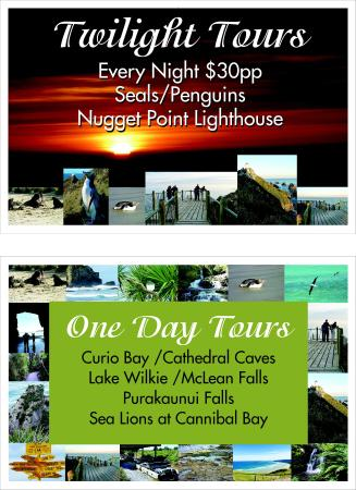 Nugget View & Kaka Point Motels: Tours