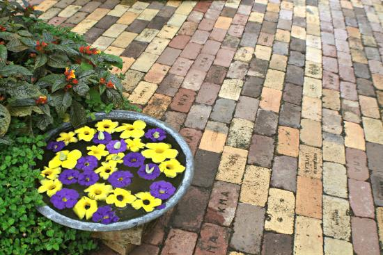Sonya's Garden B&B: Sonya's Garden