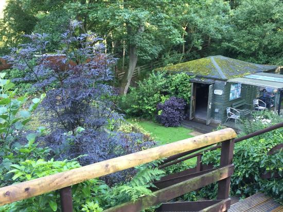 Coach House Holidays: Lovely garden too